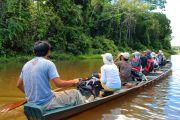 Balade en pirogue en Amazonie - Pérou
