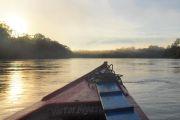 Navigation en lancha sur le río Tambopata - Amazonie - Pérou