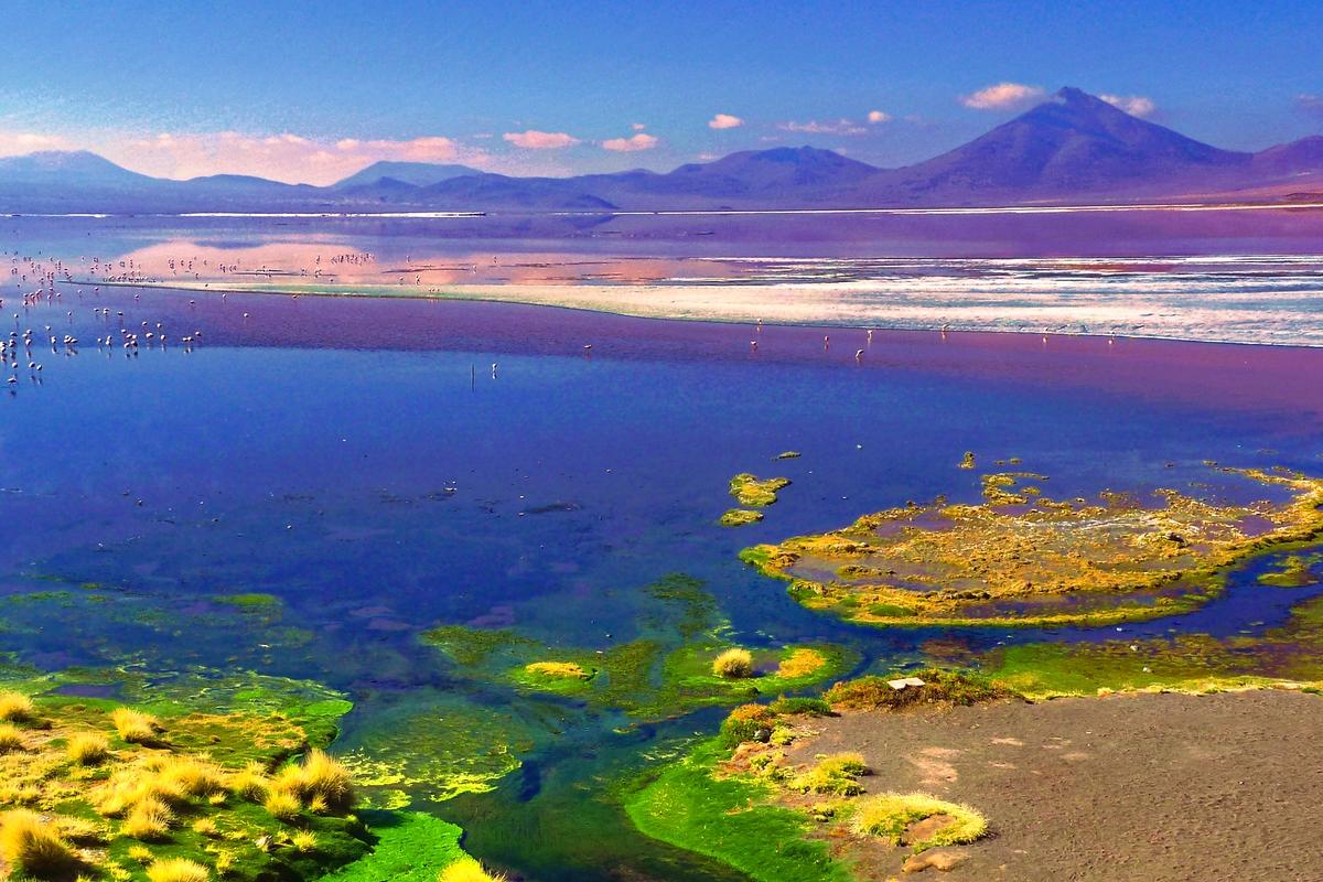 image de présentation pour le voyage Désert d'Atacama et Salar d'Uyuni
